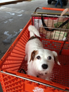 The Home Depot's Spacious Carts Rank High on Charlee's List