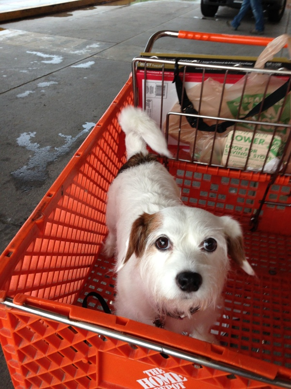 Charlee at Home Depot