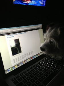 Charlee & Her New Blog