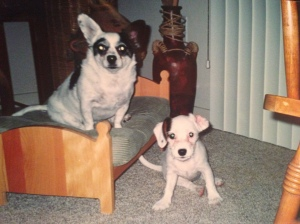 Charlee's BFF Then Was Bandit (2004)
