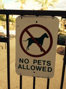 No Pets Allowed?