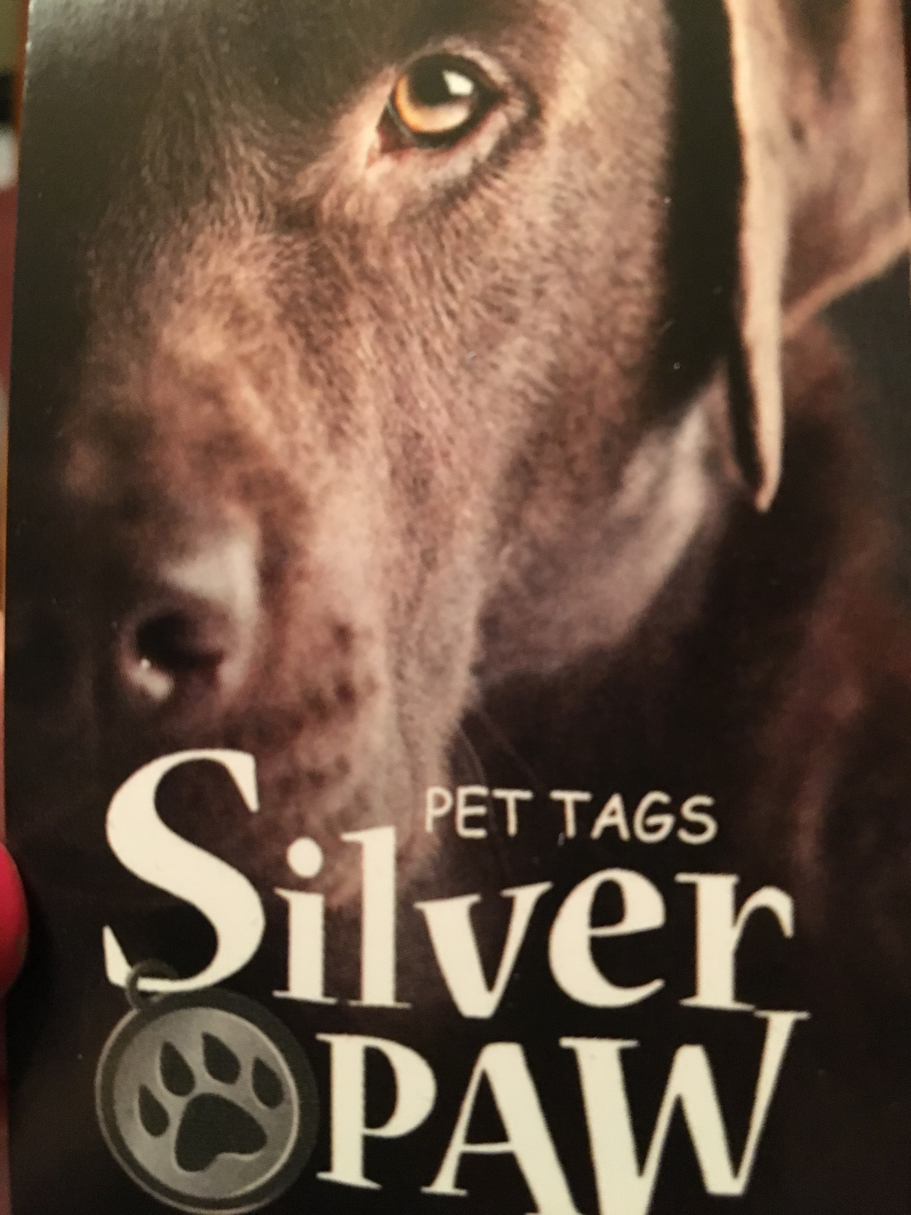 "Charlee's New ""Silver Paw"" Dog Tag Gets 5-Star Rating"